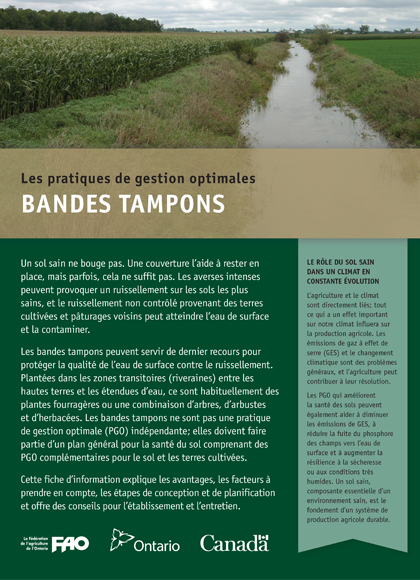 Bandes tampons